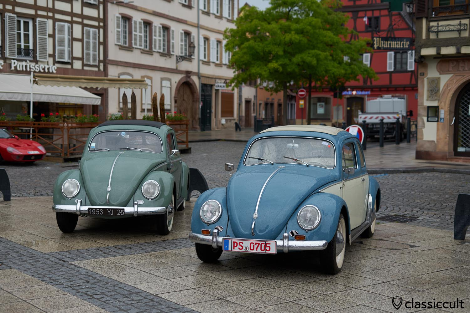 two Ragtop Beetles