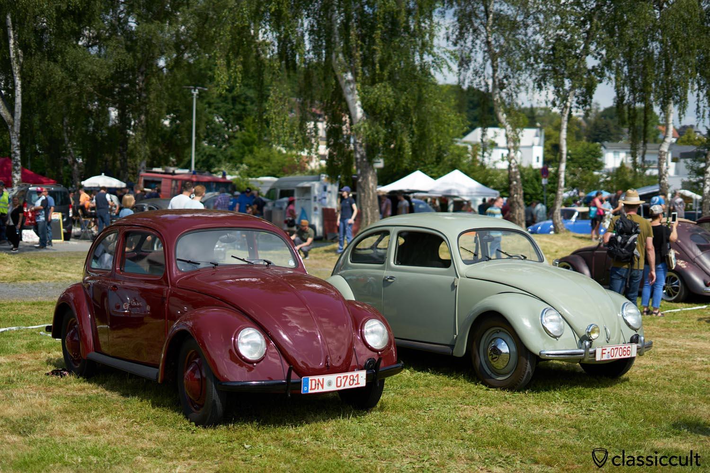 2 Split Beetles