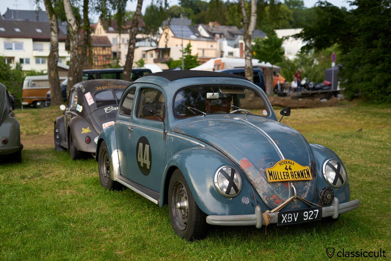 Split Rally Beetle