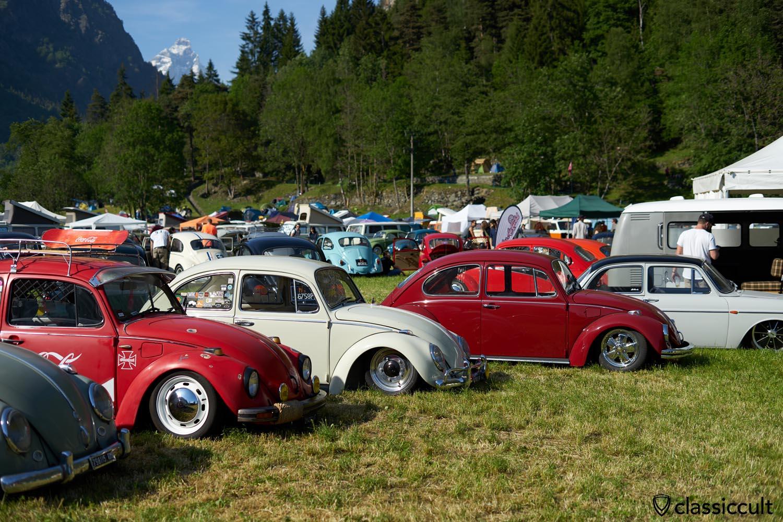 Volks'n'Roll VW Show