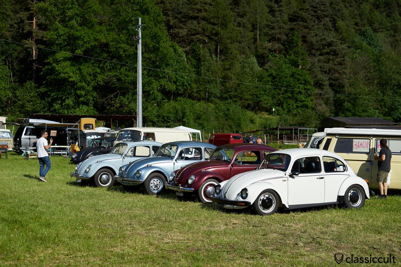 Classic Volkswagen Maggiolino