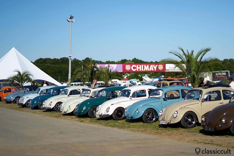 VW Type 1 Show & Shine