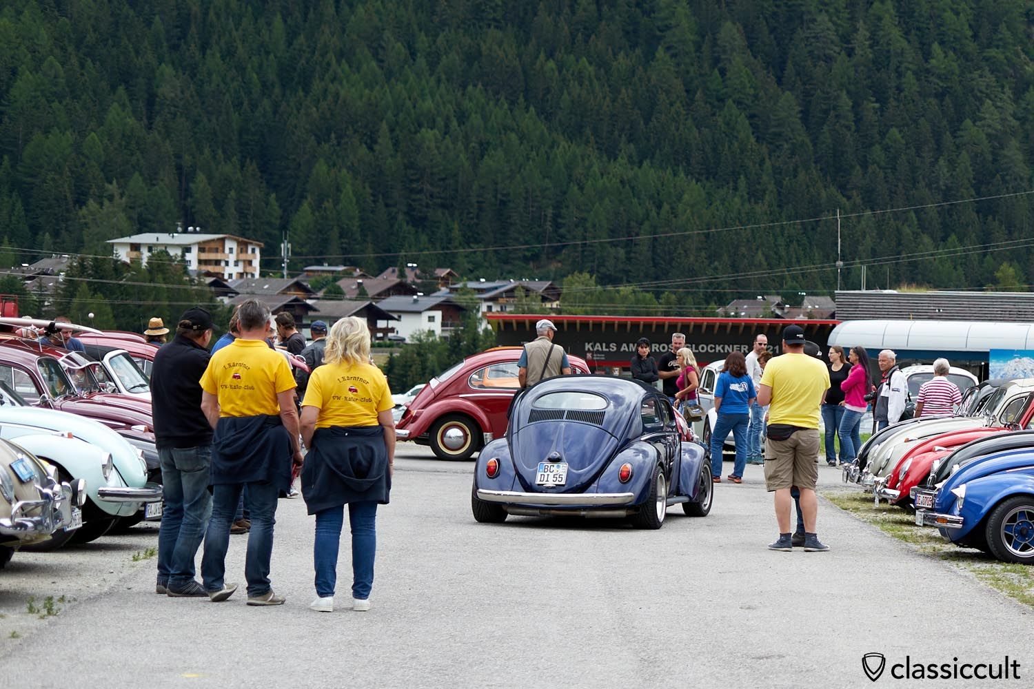 Chop top Oval Bug
