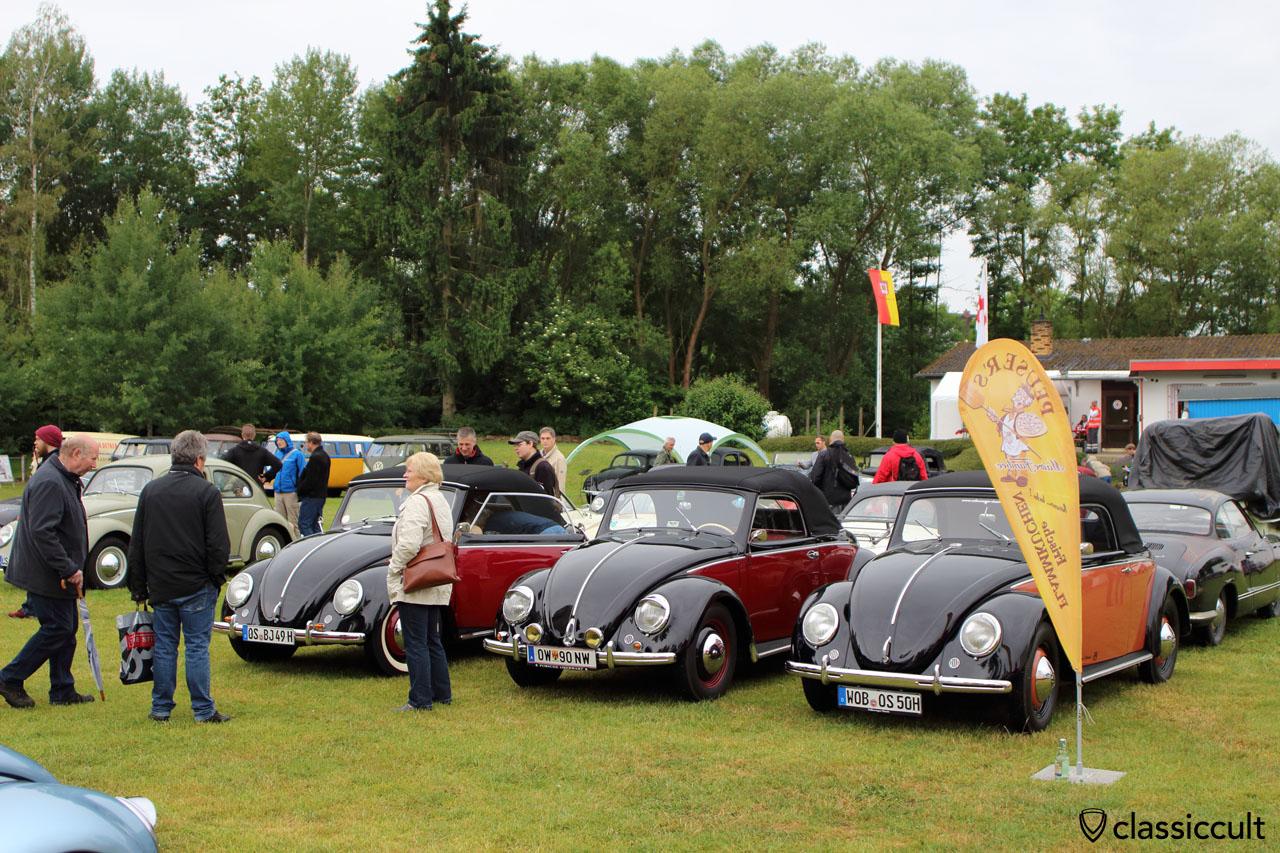 three VW Hebmüller