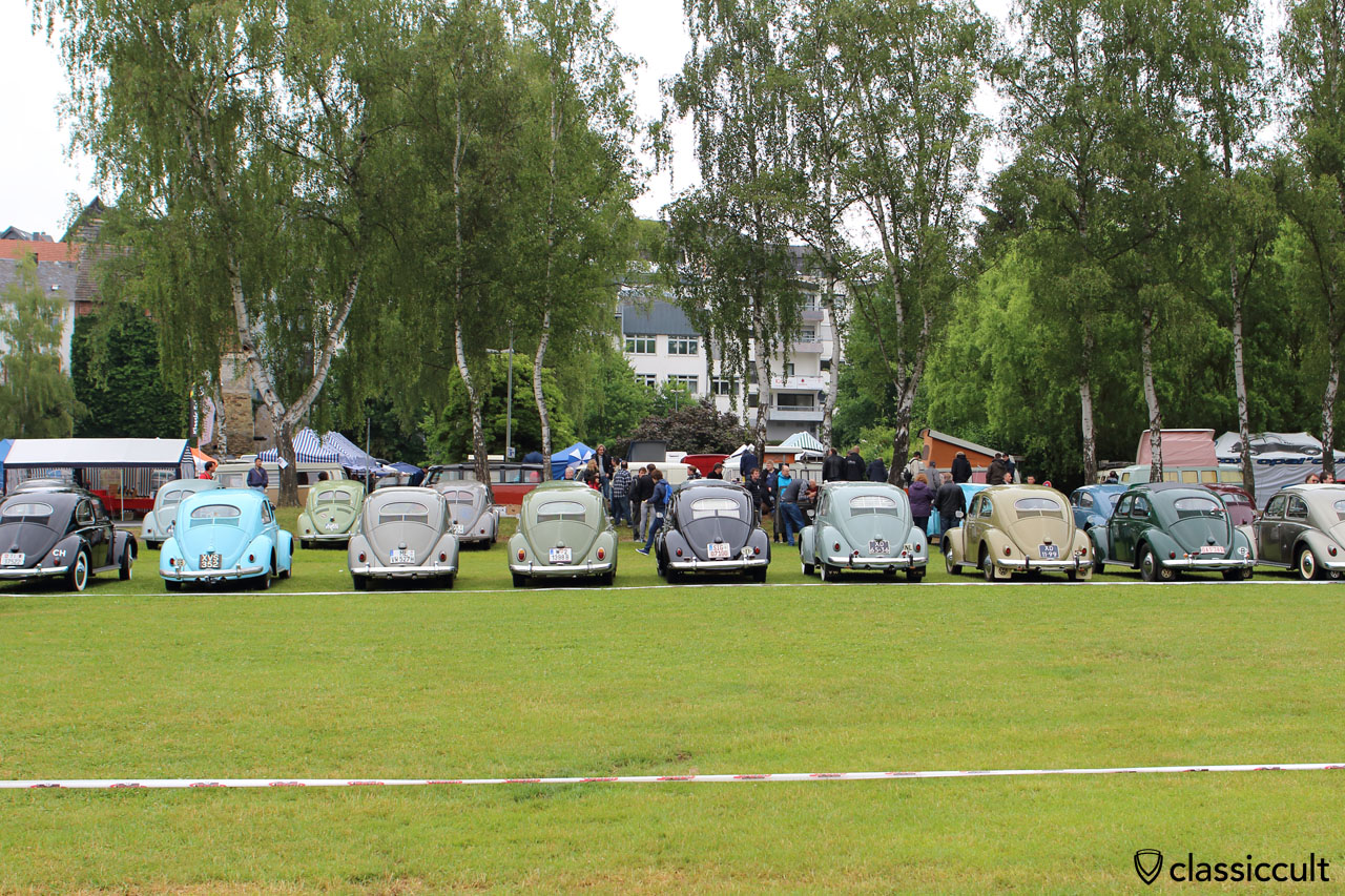 VW Oval rear, Bad Camberg VW Show 2015
