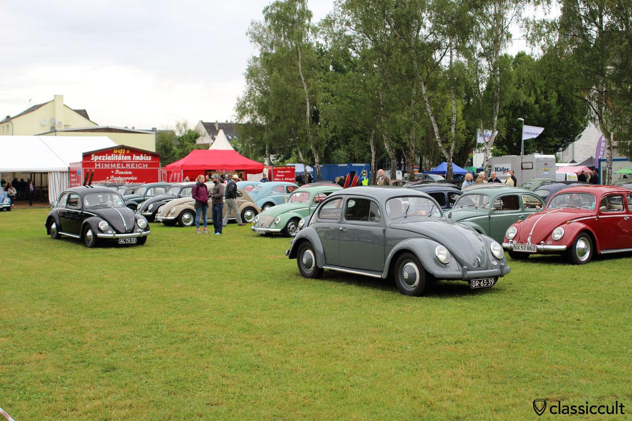 VW Split Beetles, Bad Camberg VW Meeting