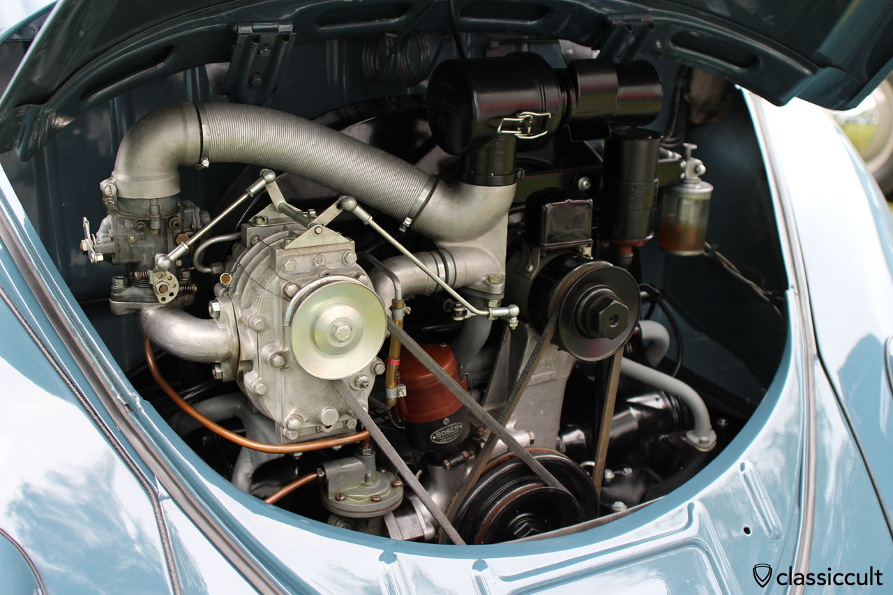 superb Split Window Beetle, engine view