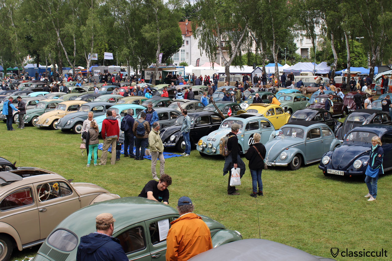 VW Beetles Bad Camberg Meeting 2015