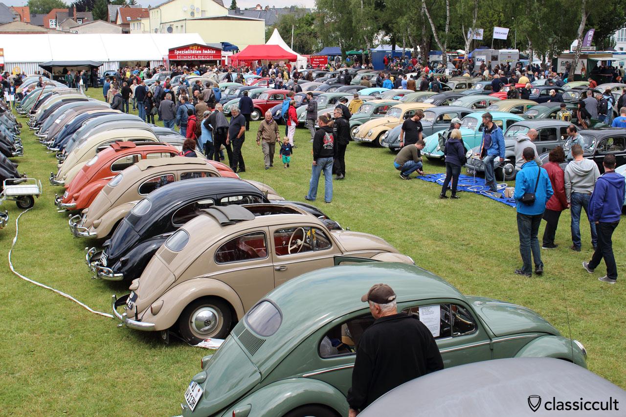 VW Oval Beetles line, Bad Camberg Meeting 2015