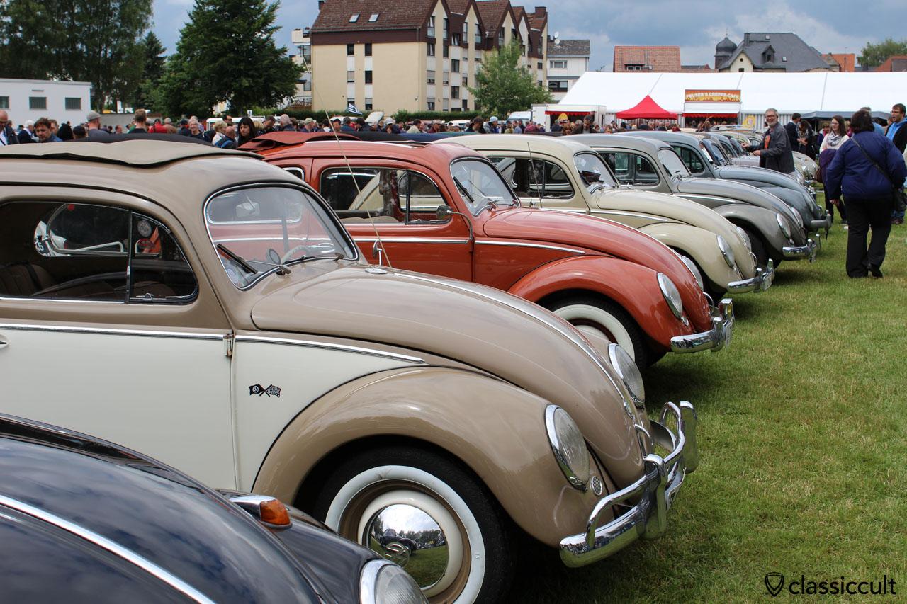 VW Beetles line, Bad Camberg 2015