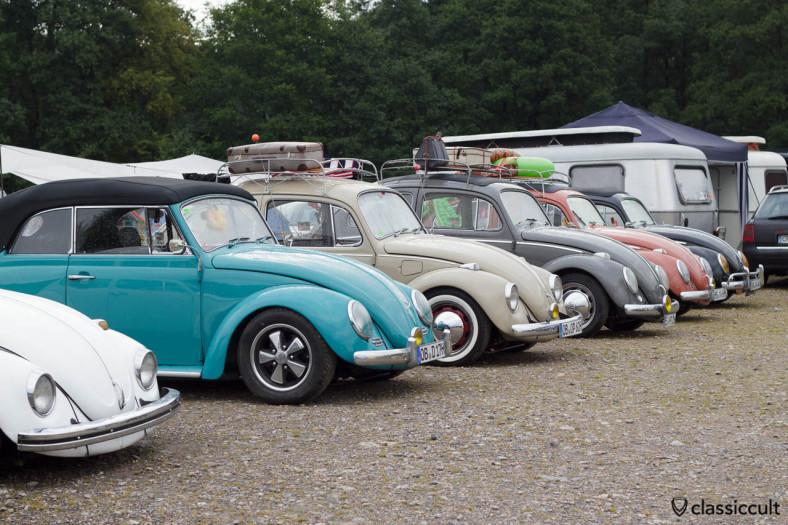 VW Beetles line at Le Bug Show campsite 8:30 a.m.