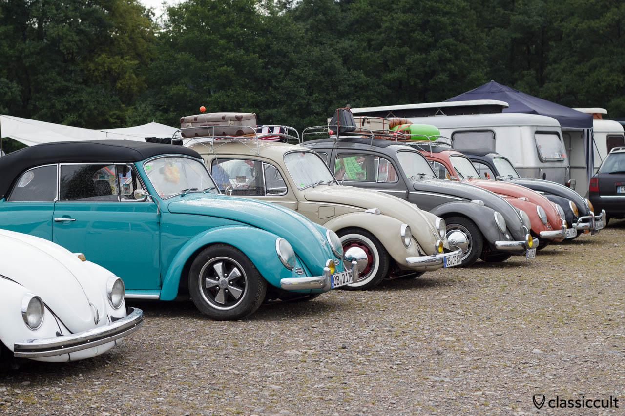 VW Beetles line at Le Bug Show campsite 8:30 a.m.