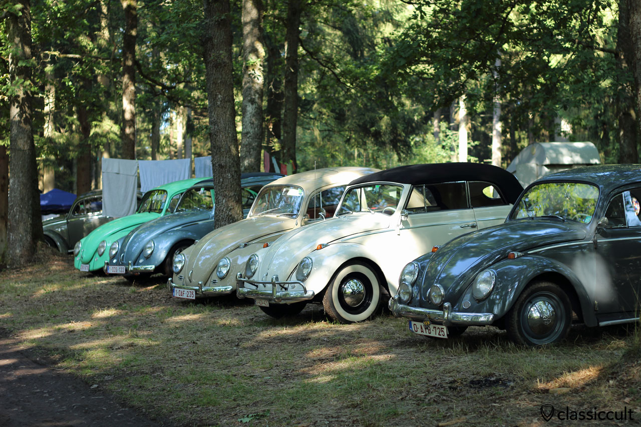 VW Beetles at Bug Show Spa Campground 2015