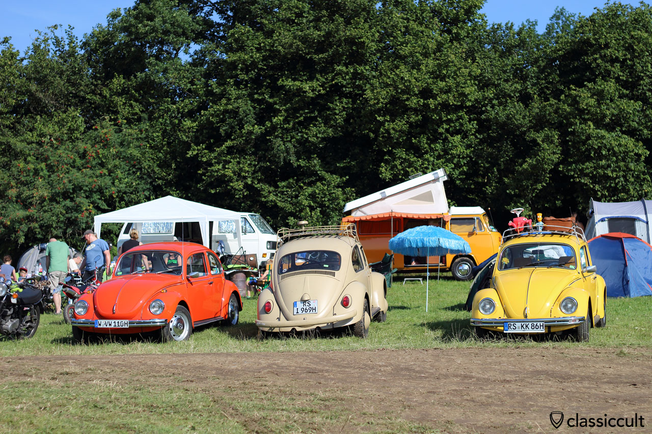 three VW Bugs from Germany