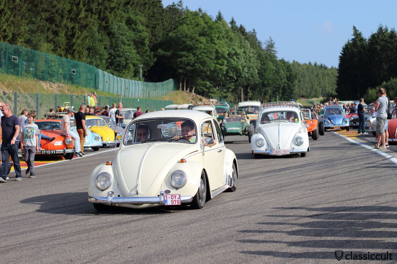 VW Beetles from Belgium, Bug Show Parade 2015