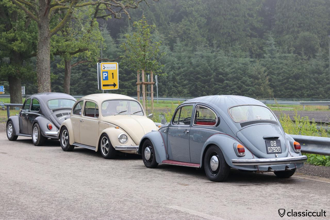 P1, Spa VW Show