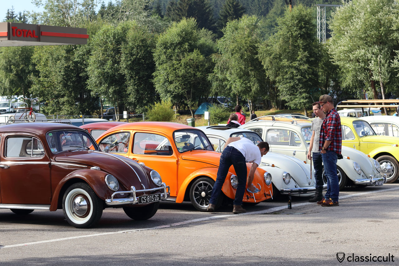 Cal look Beetle gets polished by owner, Bug Show 2016