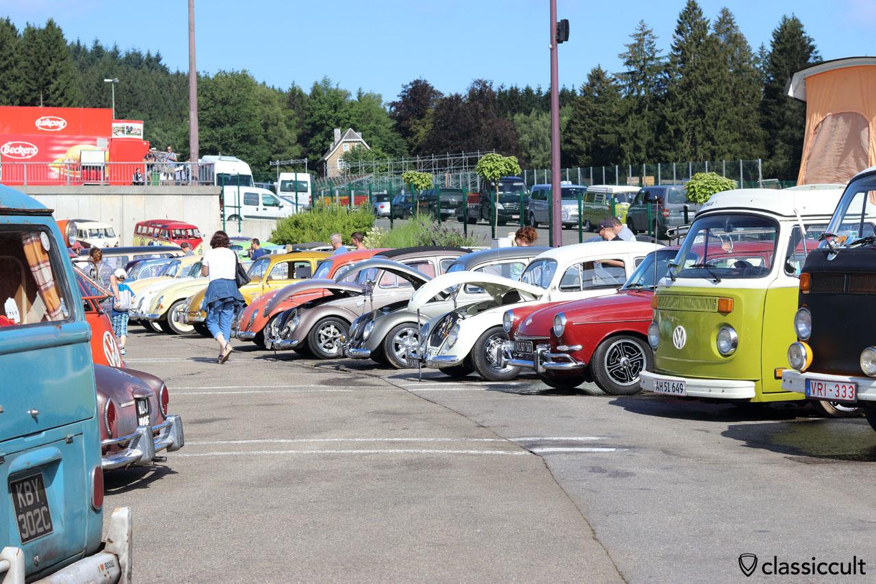 VW Line up, Bug Show 2016