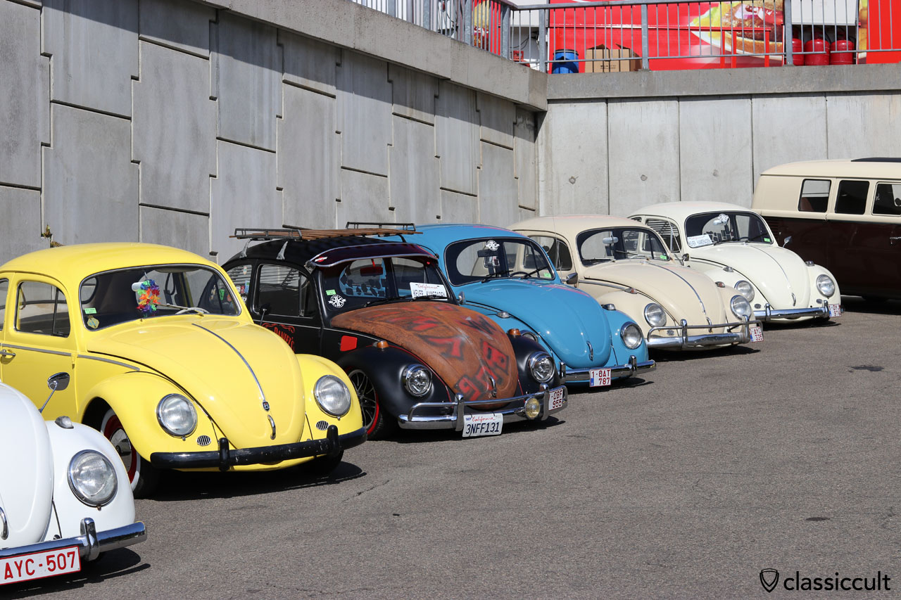 Bug Show VW Beetles 2016