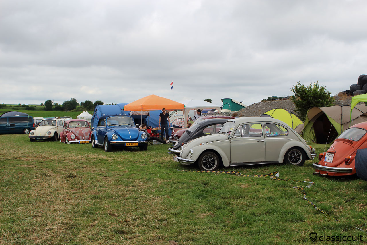 VW Beetles at EBI6 Campground