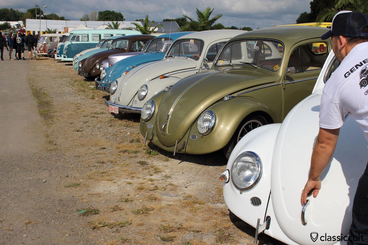 VW Beetles Show and Shine, EBI 6