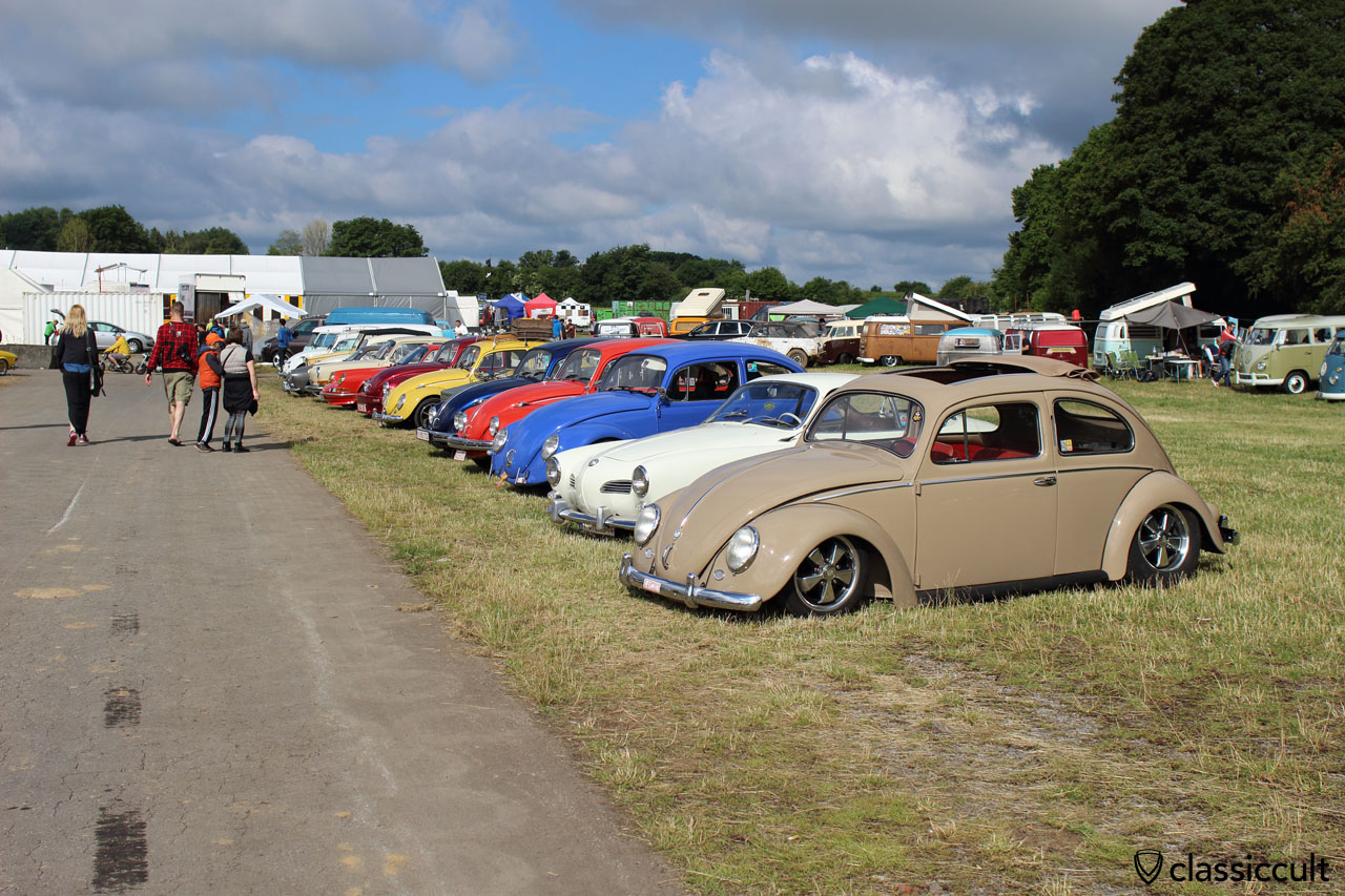 VWs at European Bug-In
