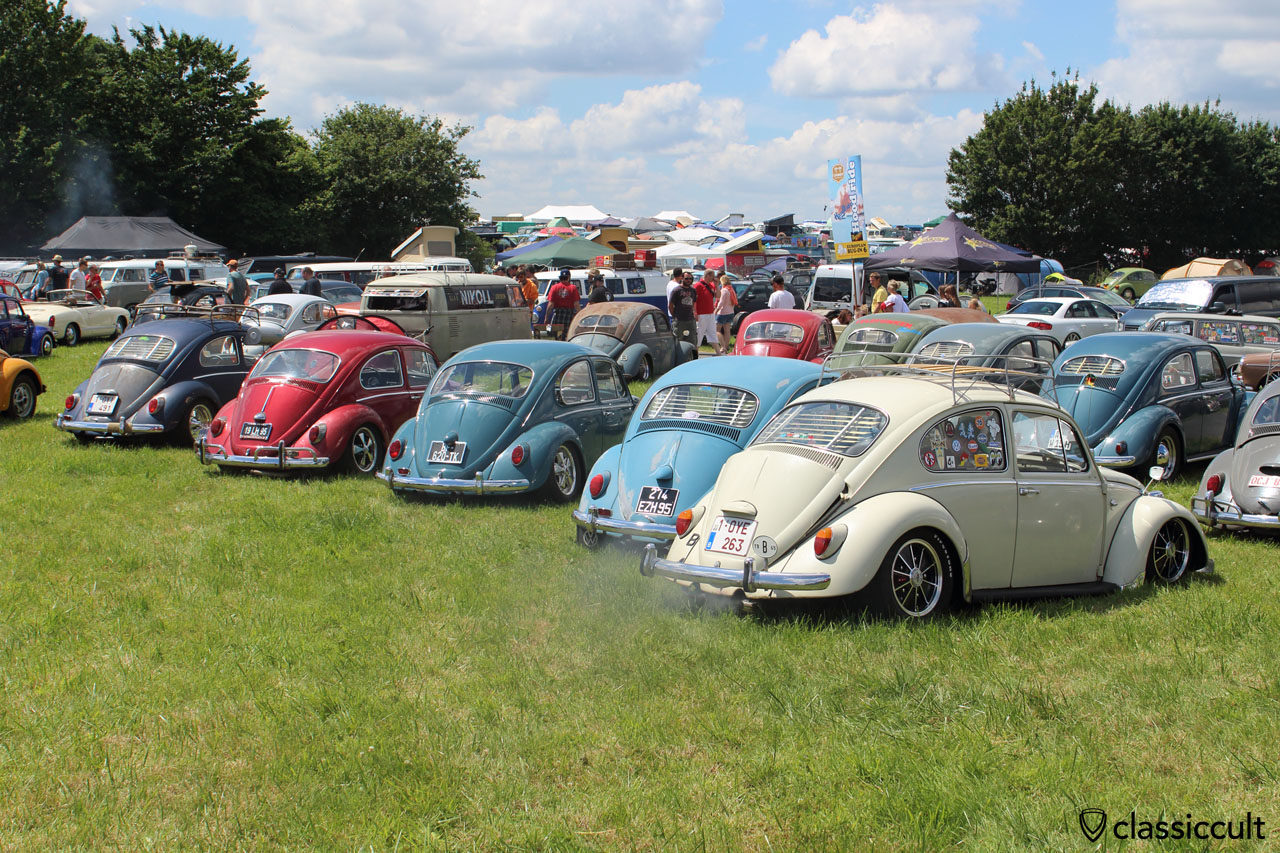European Bug-In 2015