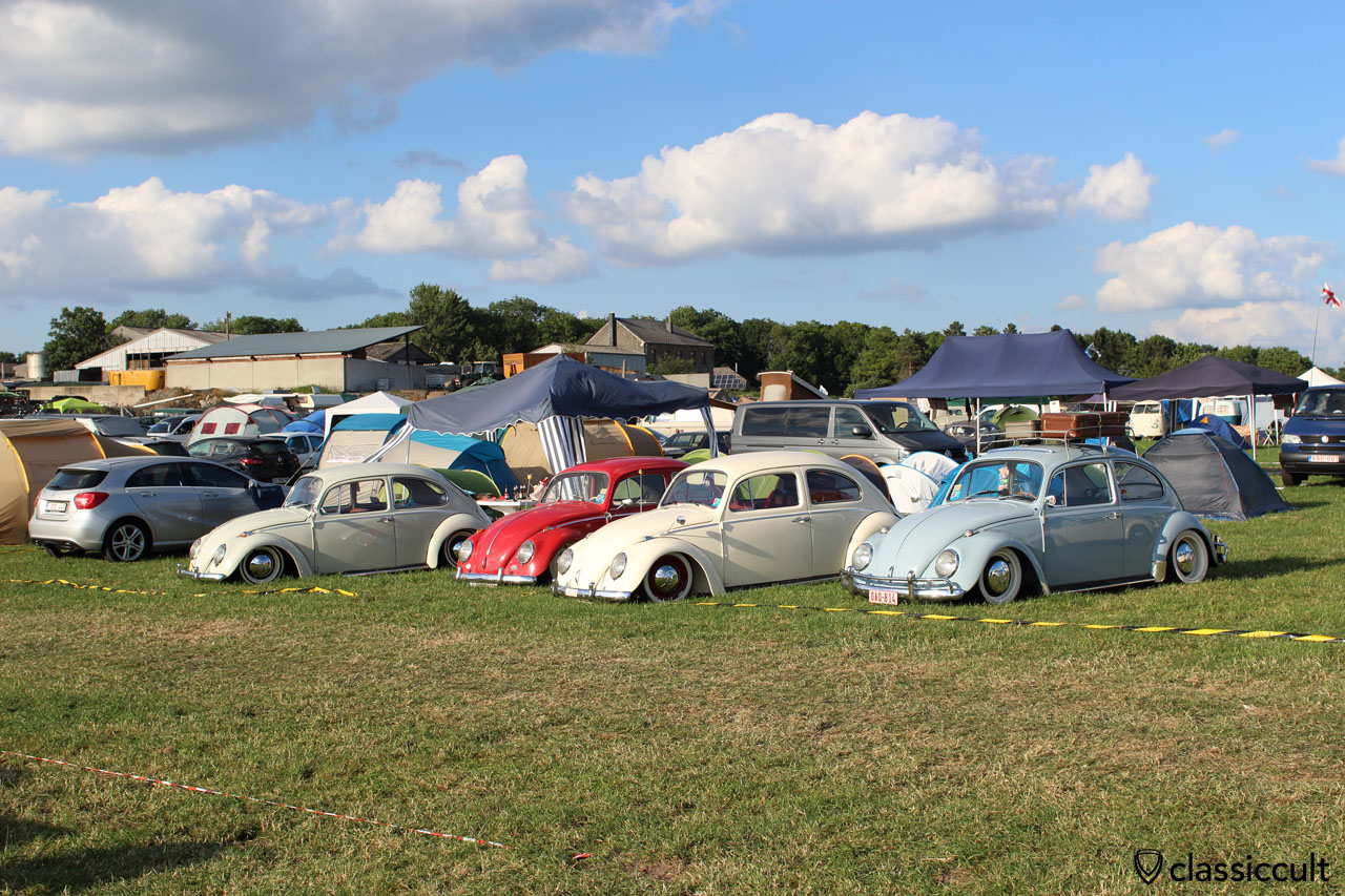 VW Beetles at campground EBI #6
