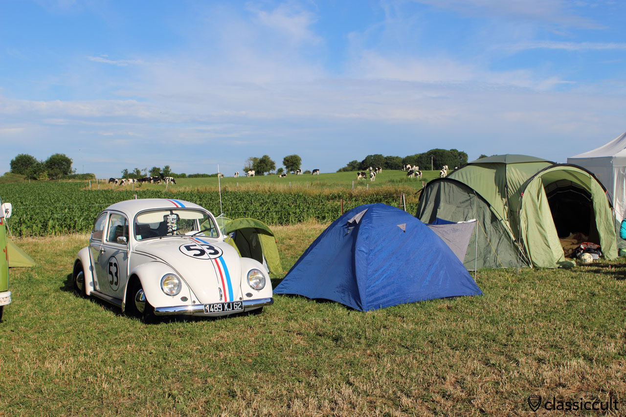 Herby 53
