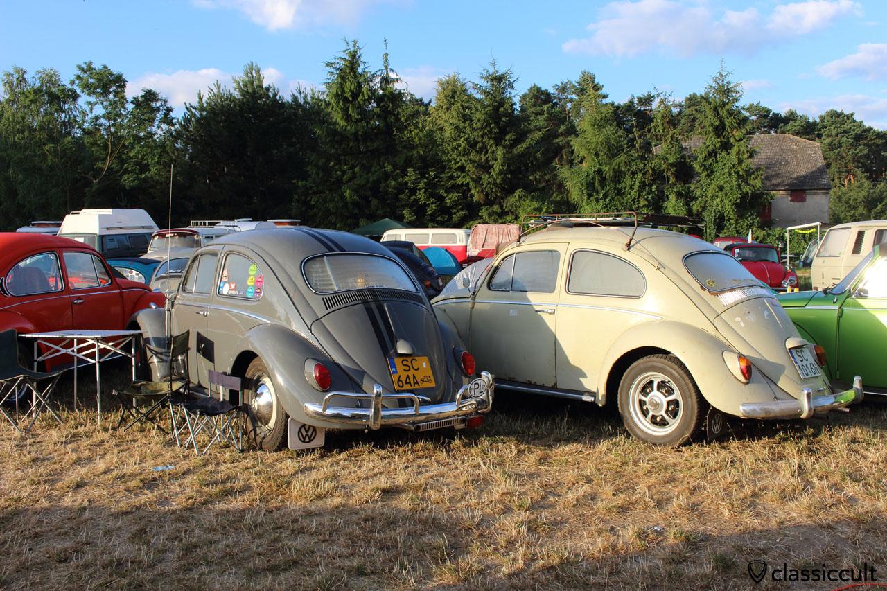 1961 VW Beetle, rear