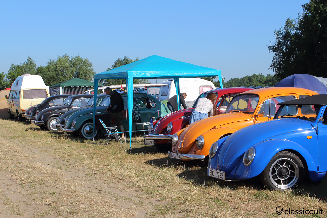 VW Beetles cleaning for parade