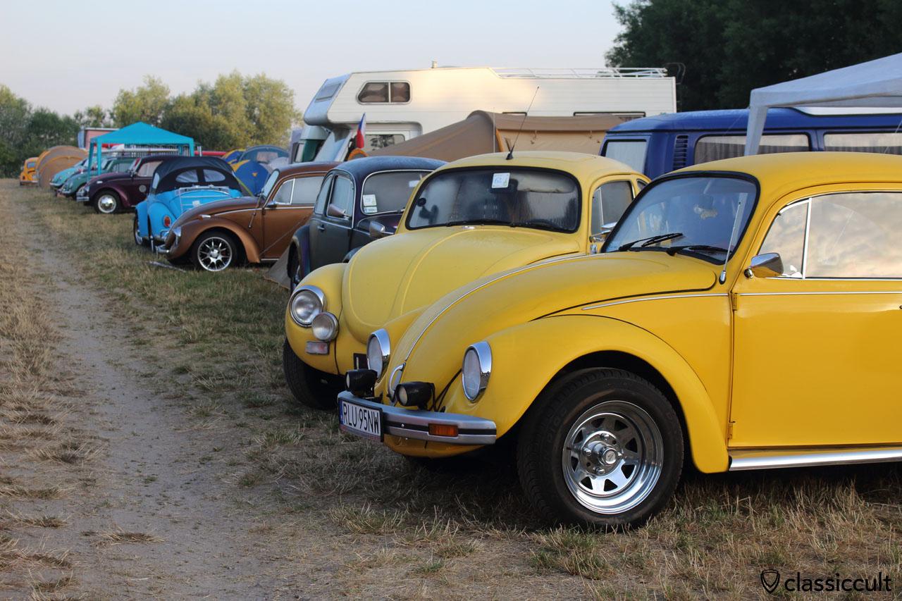 VW Beetles Garbojama 2015