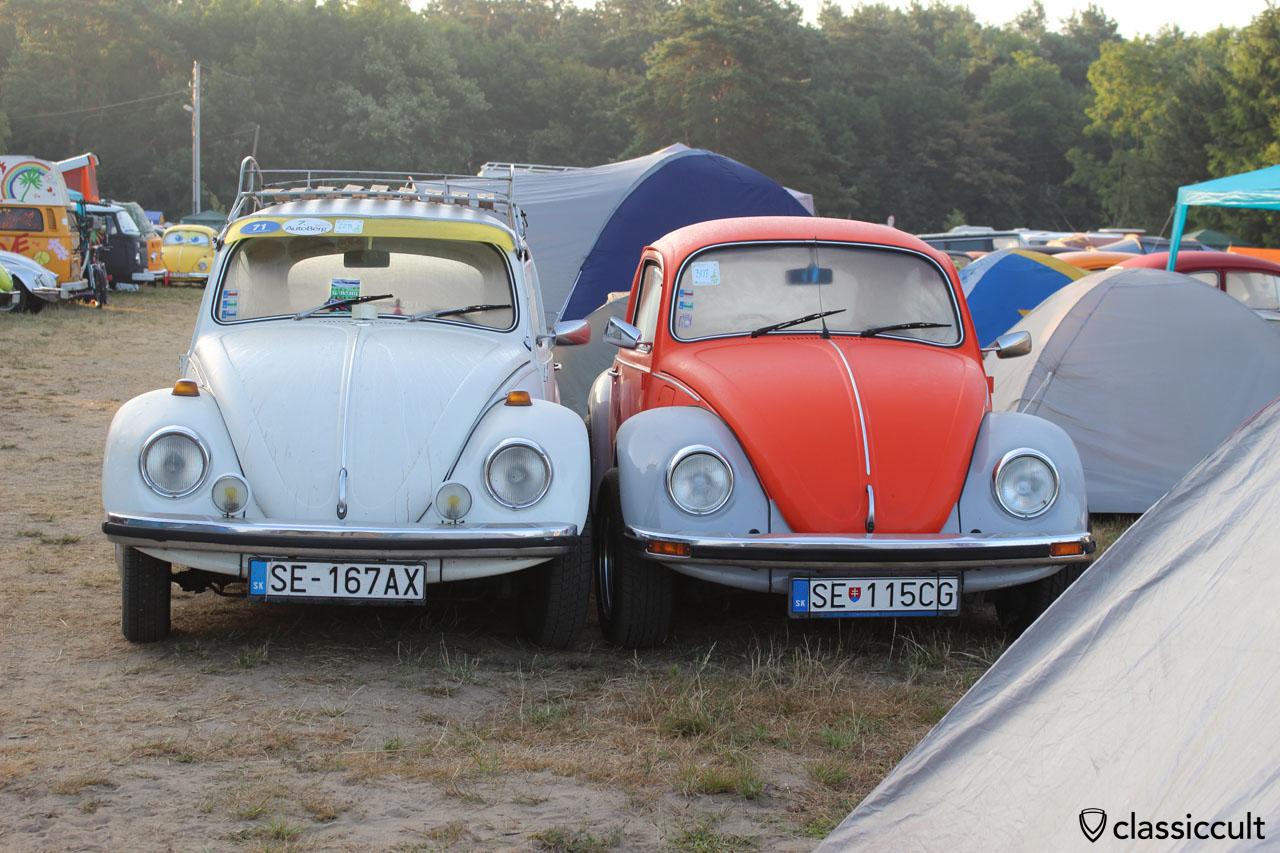 2 VW Beetles