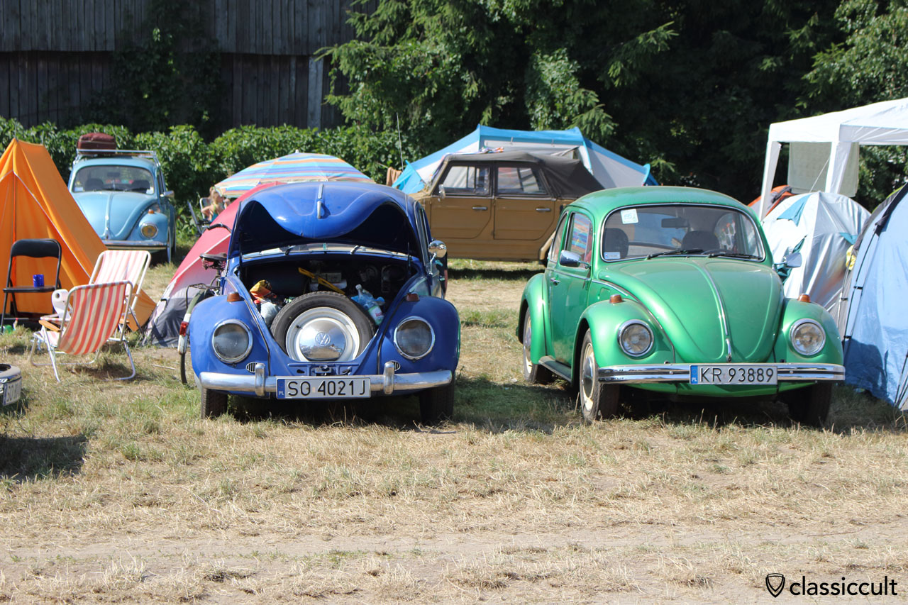 VW Beetles ZLOT VW Garbojama
