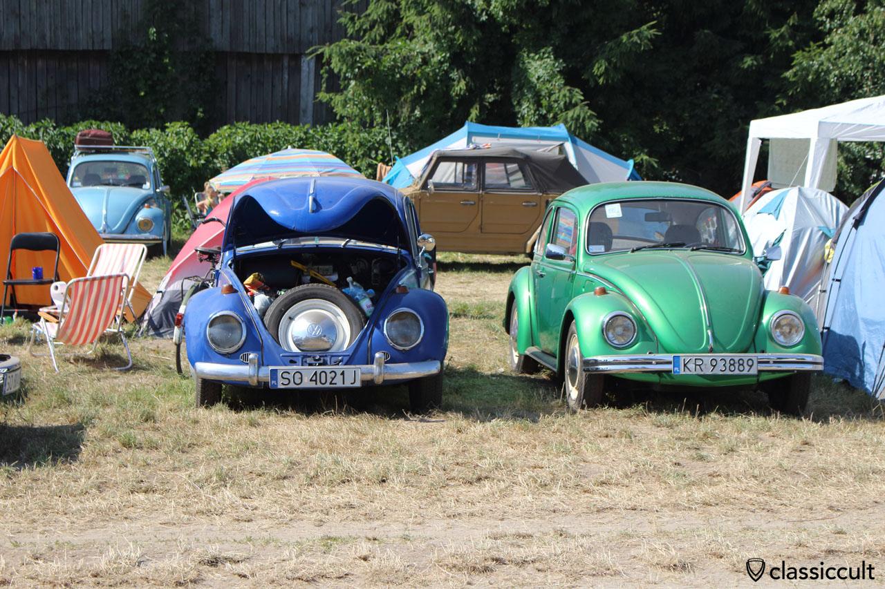VW Beetles ZLOT VW Garbojama