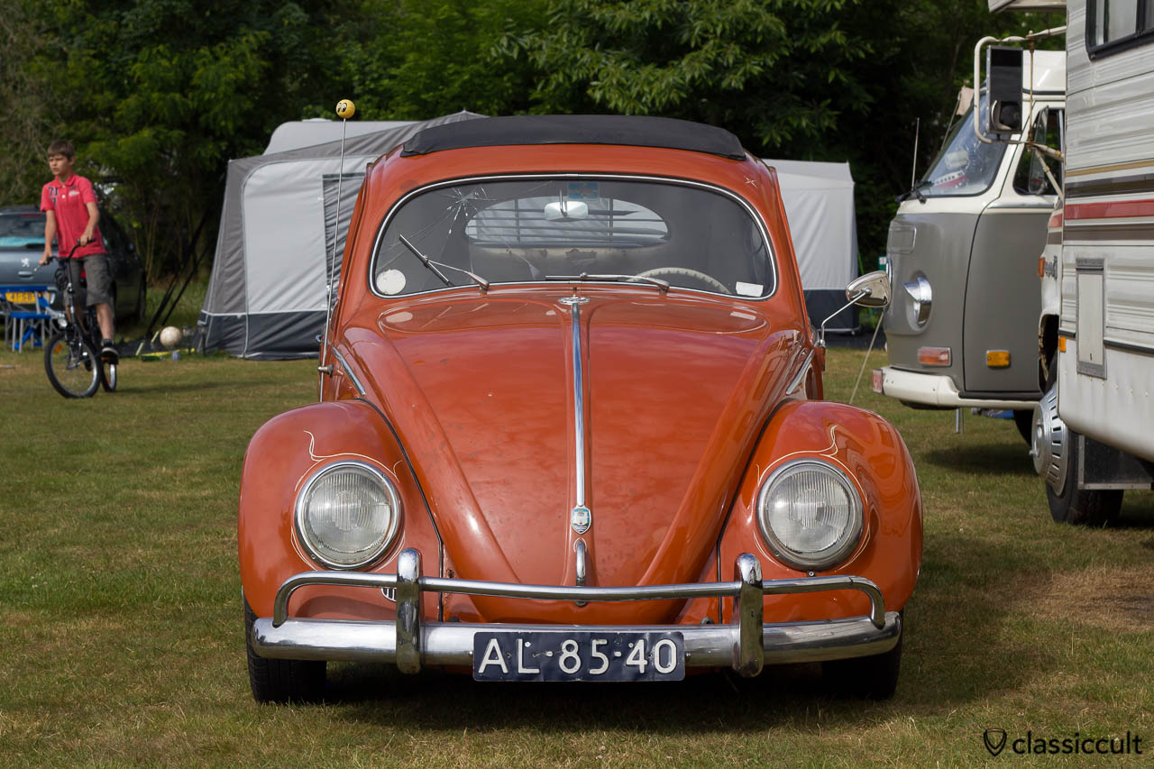 Ragtop Oval Bug