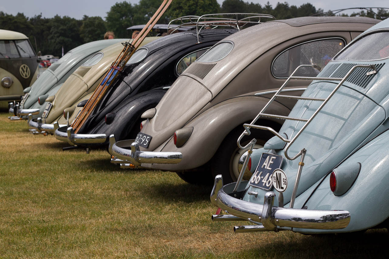 VW Oval Beetles at IKW Vintage Show, backside view