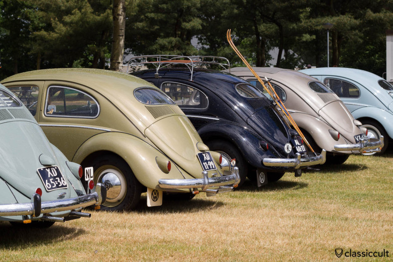 Line Up of VW Oval Beetles, backside view, IKW Wanroij 2013