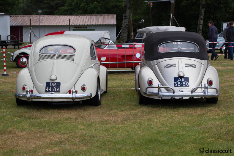VW Oval and VW Vert