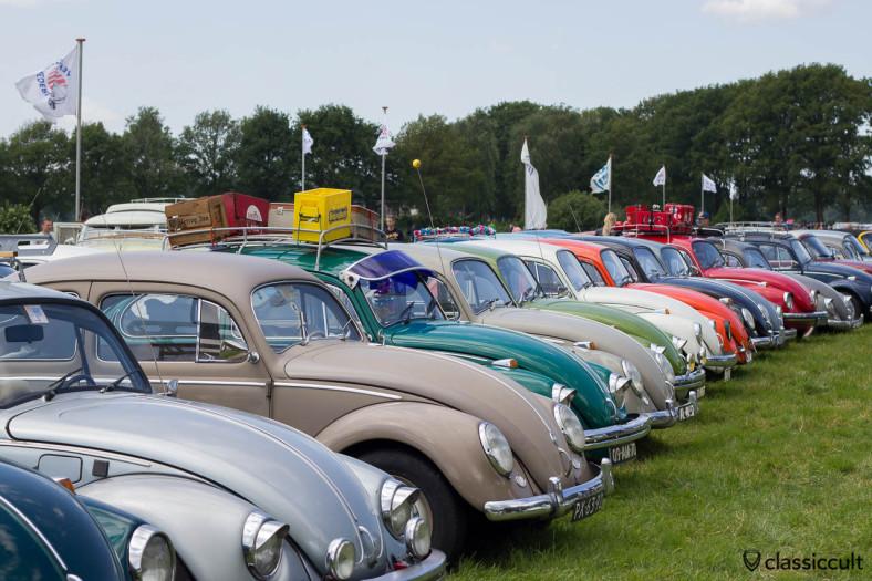 VW Beetles at IKW Volkswagen meeting in Wanroij 2013