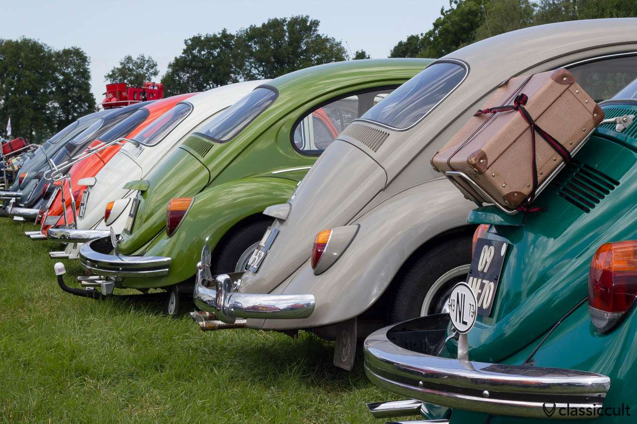 VW Bugs rear view at IKW car parking