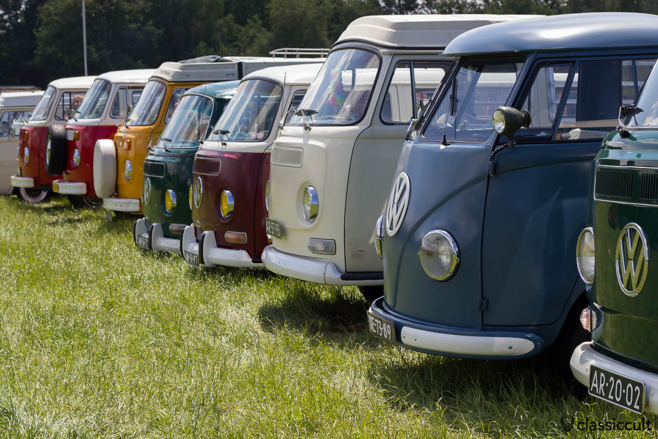 IKW Wanroij 2013 VW Bus Line-up