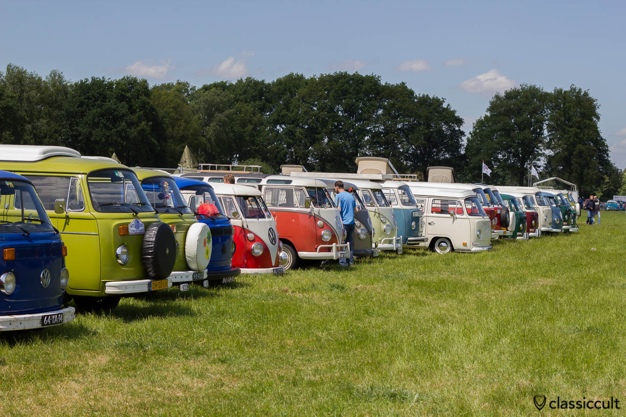 many VW Buses at IKW car park