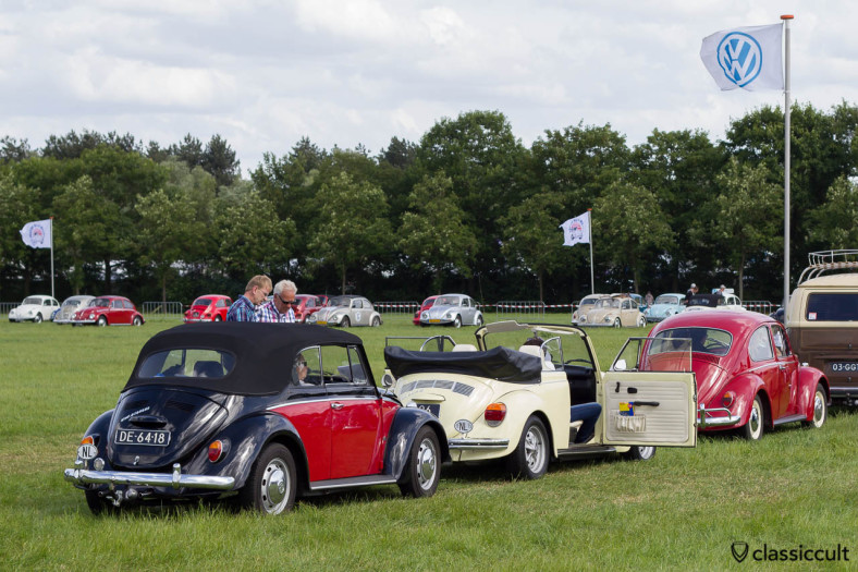 Classic Beetles waiting for the IKW Road Trip