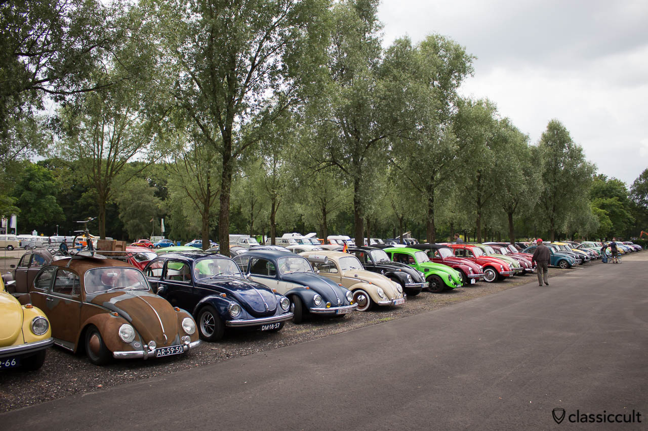 VW Beetle Parking Area