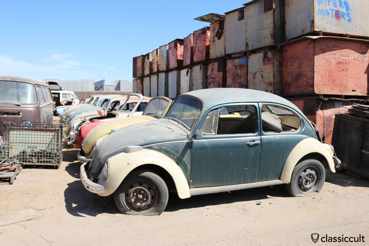 Beetle graveyard VW Vw cars Volkswagen Vw beetles t