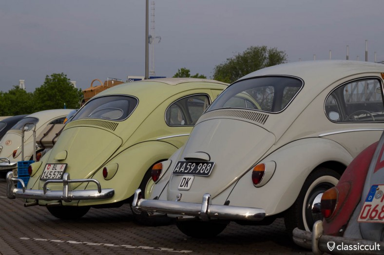 Bugs from Denmark and Belgium