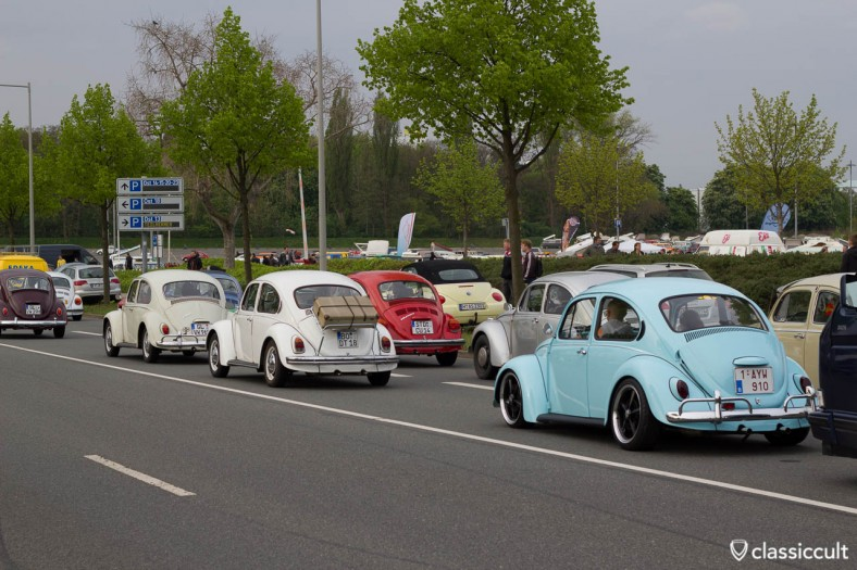 VW Bugs at MKT