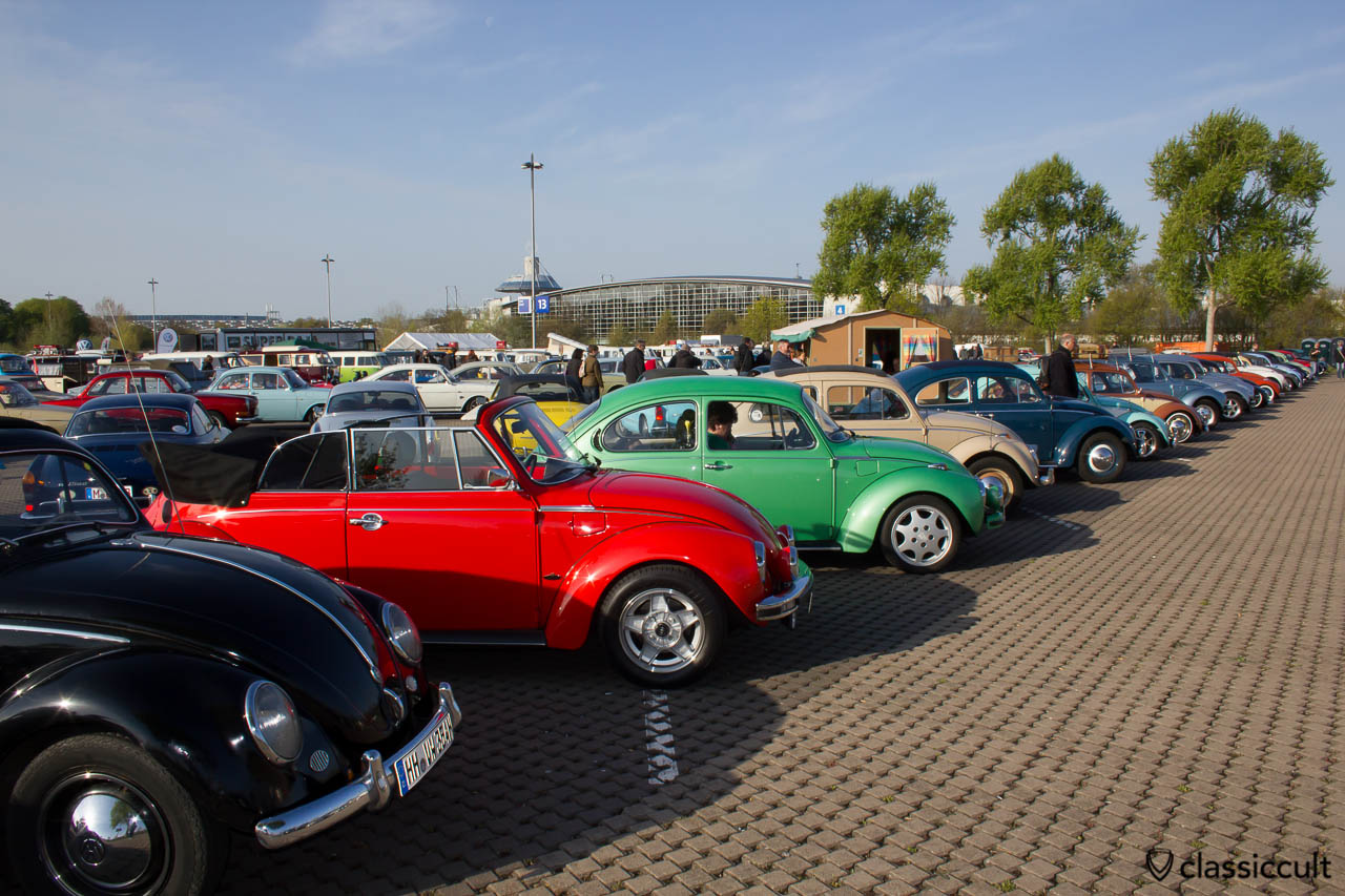 VW Käfer Line Up Maikaefertreffen 2013