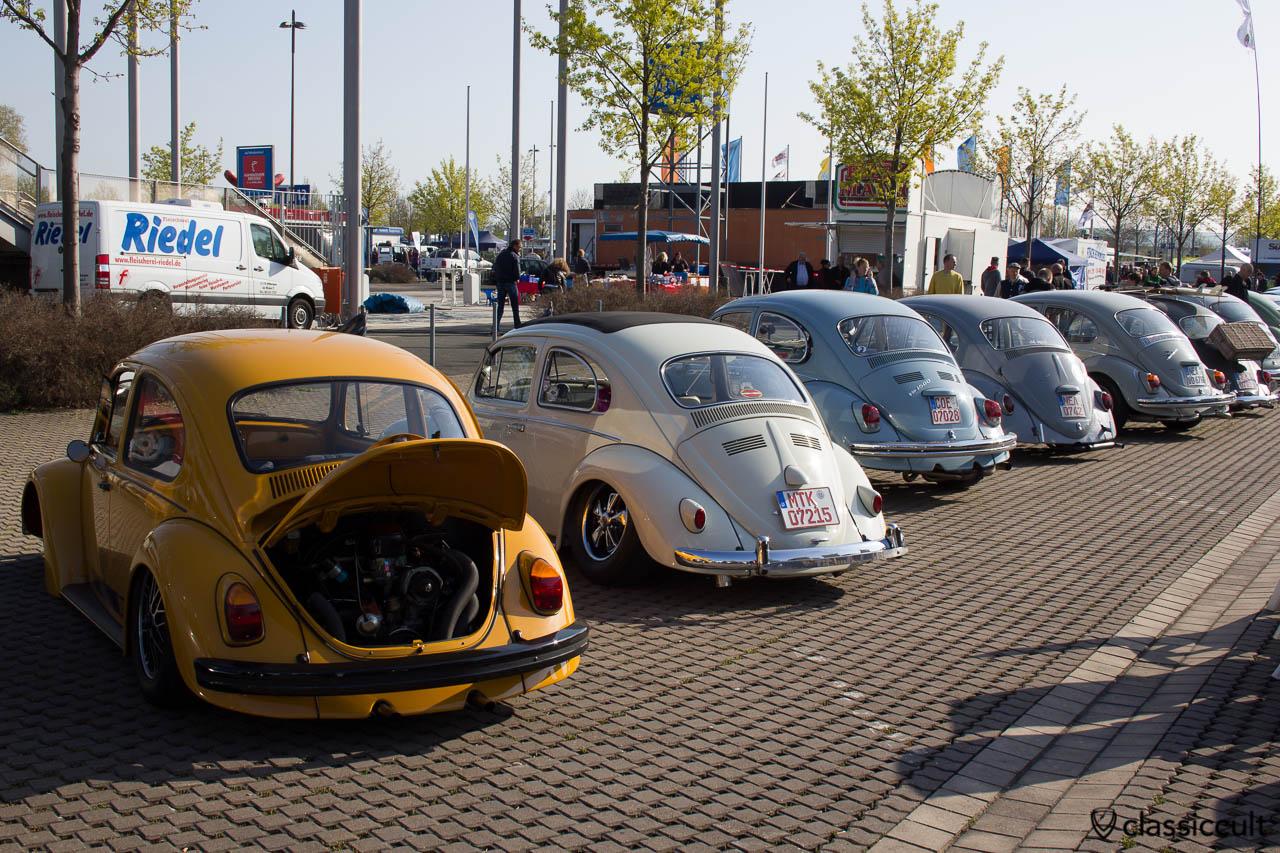 VW Käfer Rückansicht Line Up Maikaefertreffen 2013